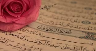Muhteşem Kur'an Tilaveti